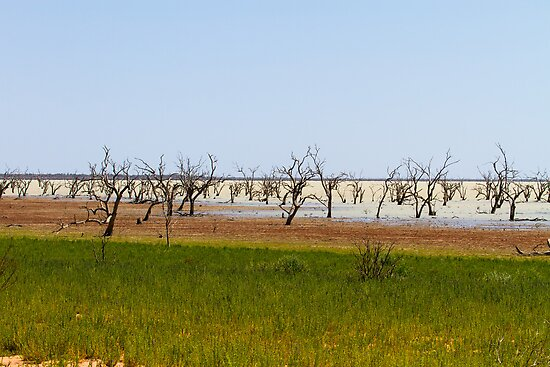 Menindee Lake  by Howard Spencer