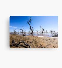 Menindee Lake NSW Australia  Metal Print