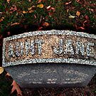 Aunt Jane's Tombstone by Jane Neill-Hancock