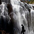 Waterfall wanderer by Stephanie Johnson