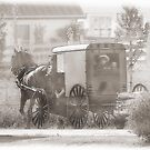 Sunday Ride for an Amish Family  by Dyle Warren