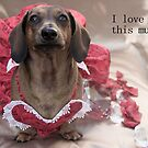 I love you this much... by Sarah Guiton
