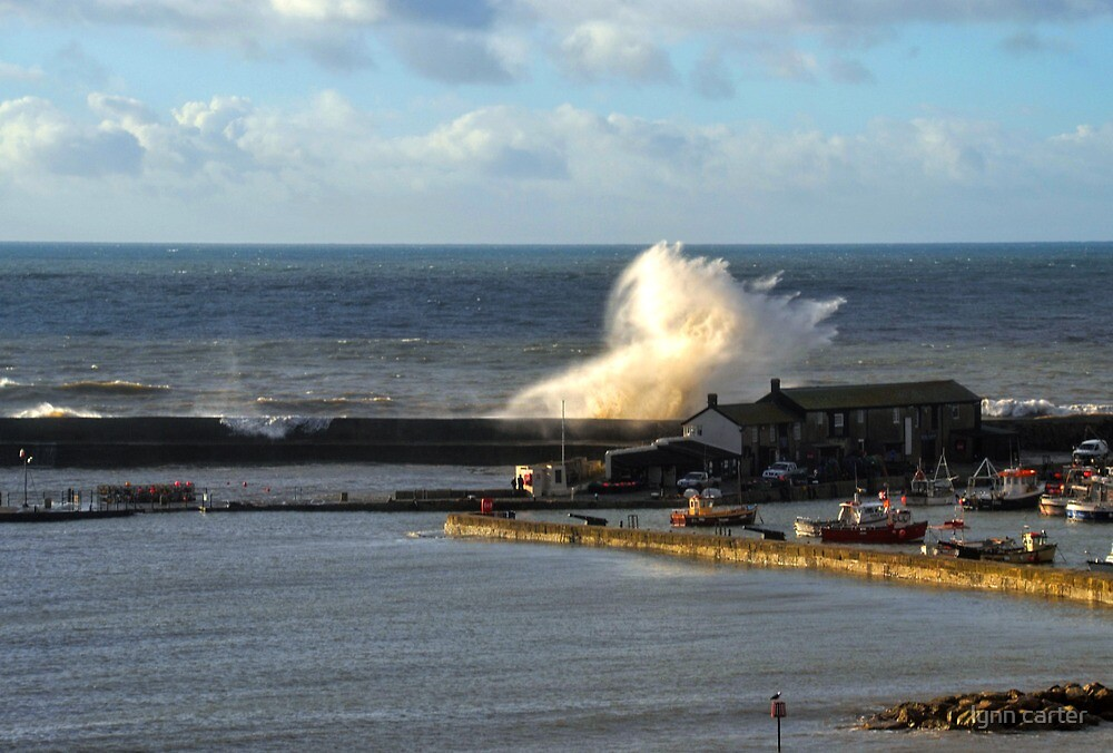 Strong Winds At Lyme, Dorset UK by lynn carter