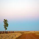 Wide Open Plain by David Haworth