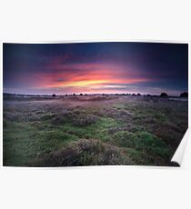 Colorful sunrise Poster