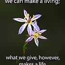 What we give  by JuliaKHarwood
