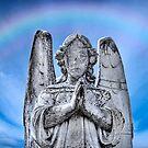 The Fallen Angel (Preston Cemetery) by frankc