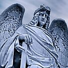 Requiem: The Statues and Monuments of the Cemeteries of Melbourne, Australia. by frankc