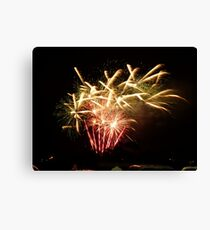 Bunnings fireworks Canvas Print