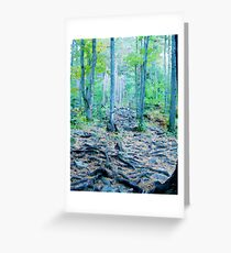 Rocky Forest Adventure Greeting Card