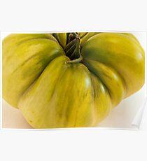 Green Tomato Macro  Poster