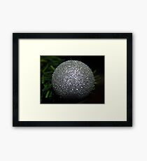 Glitter ball Framed Print