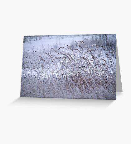 December  Greeting Card