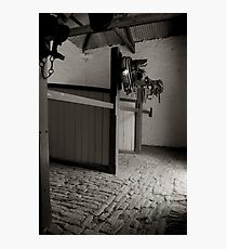 Police Stable Photographic Print
