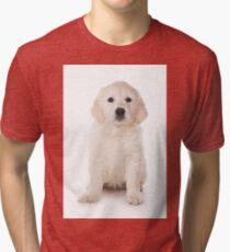 Golden retriever puppy and dog Tri-blend T-Shirt