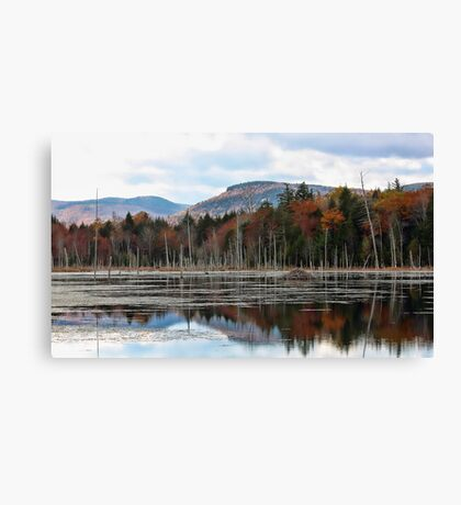 Remote Pond - Beaver Lodge Canvas Print