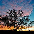 Outback Sunset by Raymond Warren