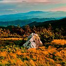 Golden Moment at Round Bald by Miles Moody