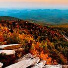 Rough Ridge Evening by Miles Moody