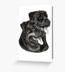 Rottweilers Greeting Card