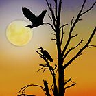 CRANES SILHOUETTE by Helen Akerstrom Photography