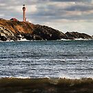 Cape Forchu by Debbie  Roberts