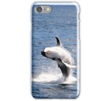 Breaching Humpback Whale iPhone Case/Skin