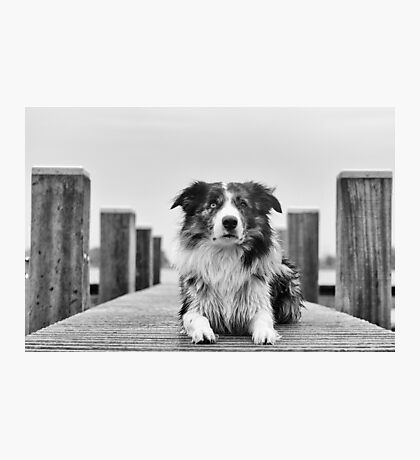 Posing in b&w Photographic Print