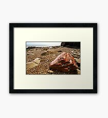 Beach 10 Framed Print