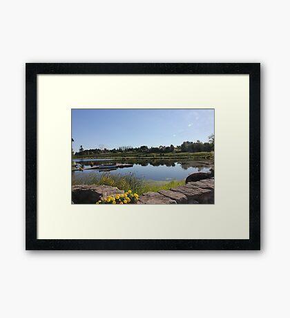 Peaceful Vineyard Framed Print