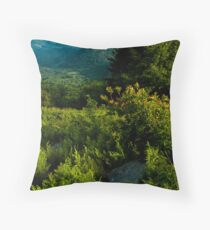 Appalachia Greening Throw Pillow