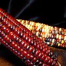 Two Corn by WildestArt