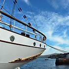 viking stories by NordicBlackbird