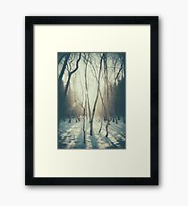 Peaceful Forrest Framed Print