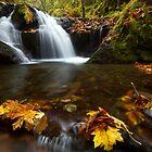 Gorton Creek Falls by Mikhail Lenitsyn