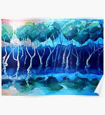 Daytime mangroves Poster