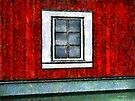 The Night Window by RC deWinter
