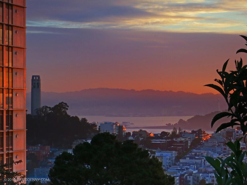 Bay Morning by David Denny