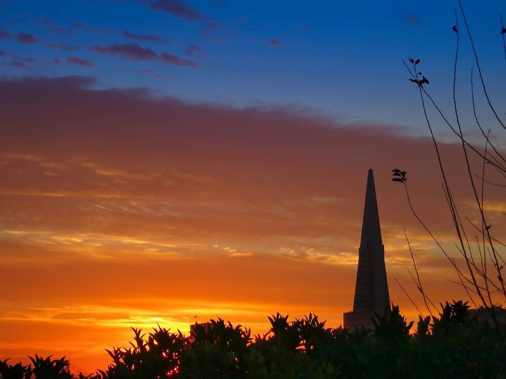 New Dawn by David Denny