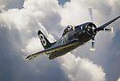 Grumman F8F-2P Bearcat by Nigel Bangert