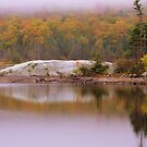 White Mountains In Autumn by Uni356
