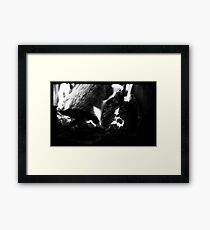 The Crown of Natural Energy Framed Print
