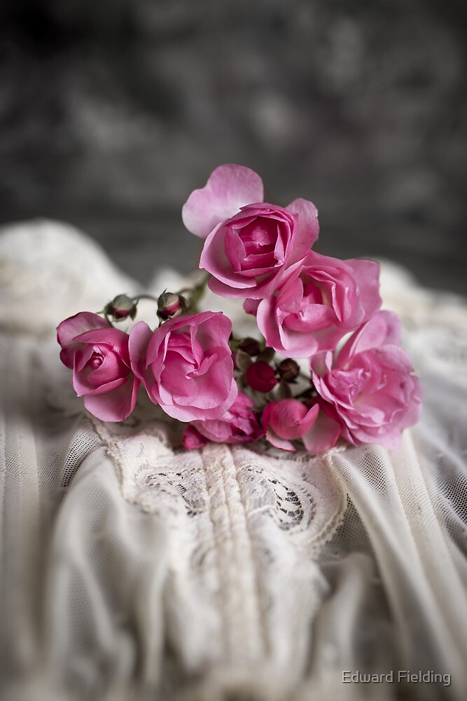 Roses and Lace by Edward Fielding