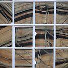Whacky window by Javimage