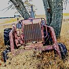 Out to Pasture by Leann Moses Rardin