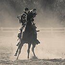 War Horse by Elizabeth Heath
