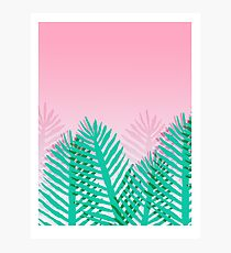 So Fine - palm springs abstract neon 1980s style retro throwback art with palm indoor house plant  Photographic Print