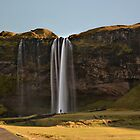 Seljalandsfoss by Peter Hammer