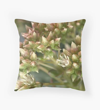 Succulent Green Throw Pillow