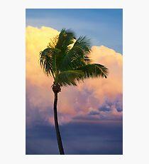 Tropical Sunset Photographic Print